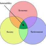 Why is sustainability important?