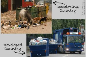 Similarities Between Developed and Developing Countries